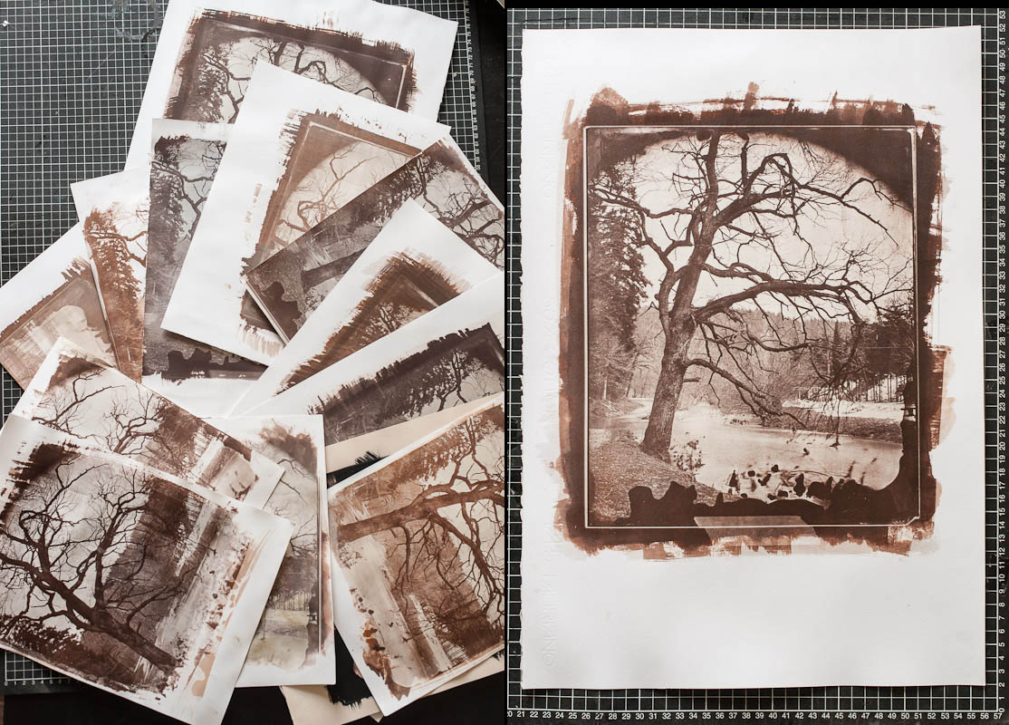 Cyanotypes and Salt Printing Workshop | Holly Constantine Photography