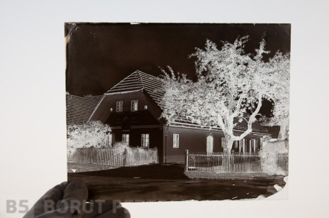 Wet plate Collodion plate that was redeveloped to build up density.