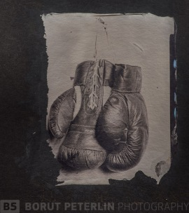 A collodion transfer to black paper - Pannotype