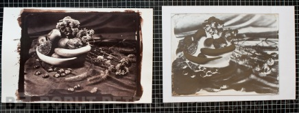 A salt print toned with gold with a redeveloped wet plate collodion negative