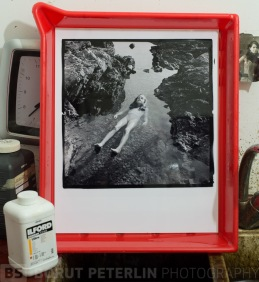 Silver gelatin print fixed in hypo (sodium thiosulfate) and toned with sellenium toner.