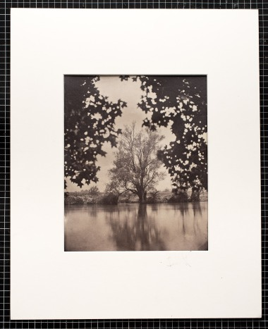"""An albumen print toned with gold from a wet plate collodion negative format 10x12"""". River Krka, Straža, Slovenia, EU."""
