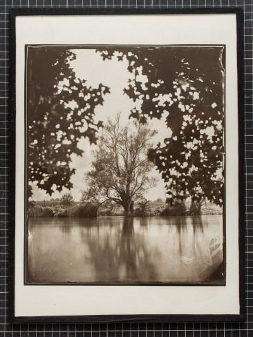 "A Carbon Print on glass from a wet plate collodion negative format 10x12"". River Krka, Straža, Slovenia, EU."