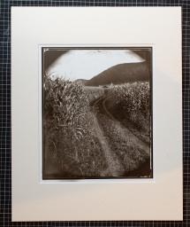 "A carbon print , format 10x12"" (25x30cm) in a mat, size 40x50cm (16""x20""). Edition 1/12."