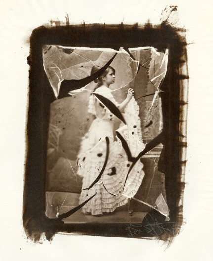 An albumen print toned with gold, from a wet plate collodion negative.