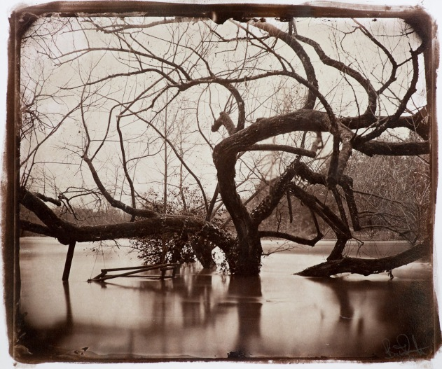 "An albumen print, double coated with albumen and twice hand coated with silver, toned with gold, contact copied from a wet plate collodion plate, format 10x12""."