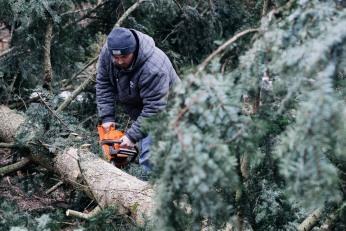 Senad Begić, the man who fixed the chainsaw and saw the tree like a cake. Photo Tomo Vrešak