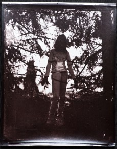 An albumen print toned with gold-chloride from a retouched wet plate collodion negative.