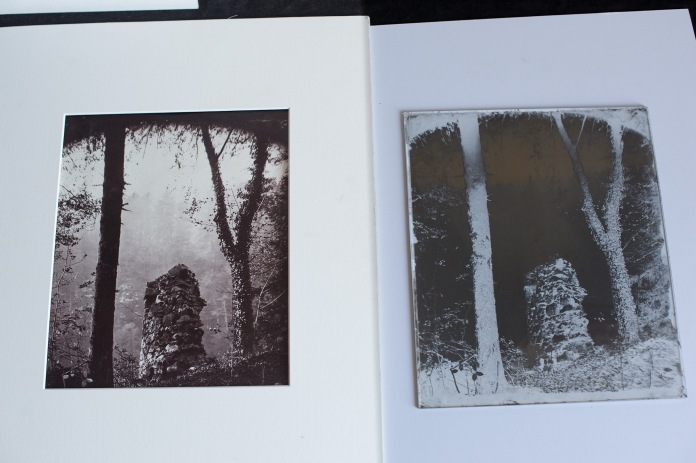 Albumen print, toned with gold, from wet plate collodion negative.