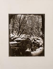 Carbon print from wet plate collodion negative. River Sušica, Dolenjske Toplice, Slovenia