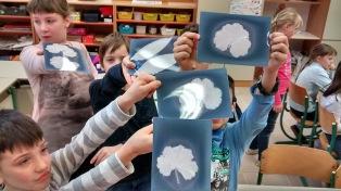 proud on their lumen prints